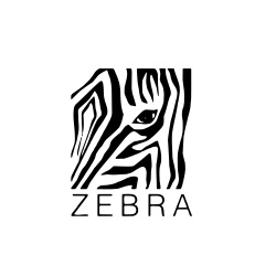 Zebra Fashion Indore Madhya Pradesh India