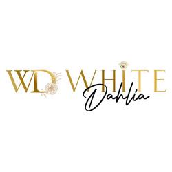 White Dahlia New Delhi India